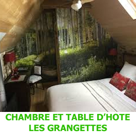 Surplombant le village de Conques cette la chambre et table d'hôte les Grangettes acceuille les pèlerins.